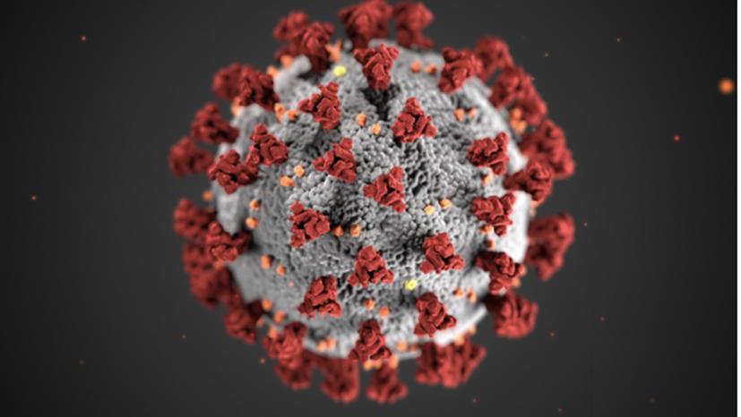 SARS-CoV-2, o coronavírus que causa a Covid-19 - Alissa Eckert / CDC